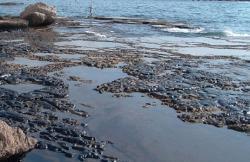 inquinamento_mare